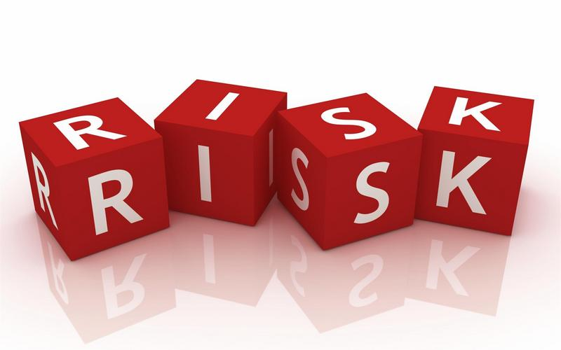 Risk Consulting Services